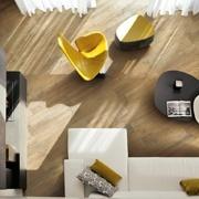 Larix · Living Room Tile